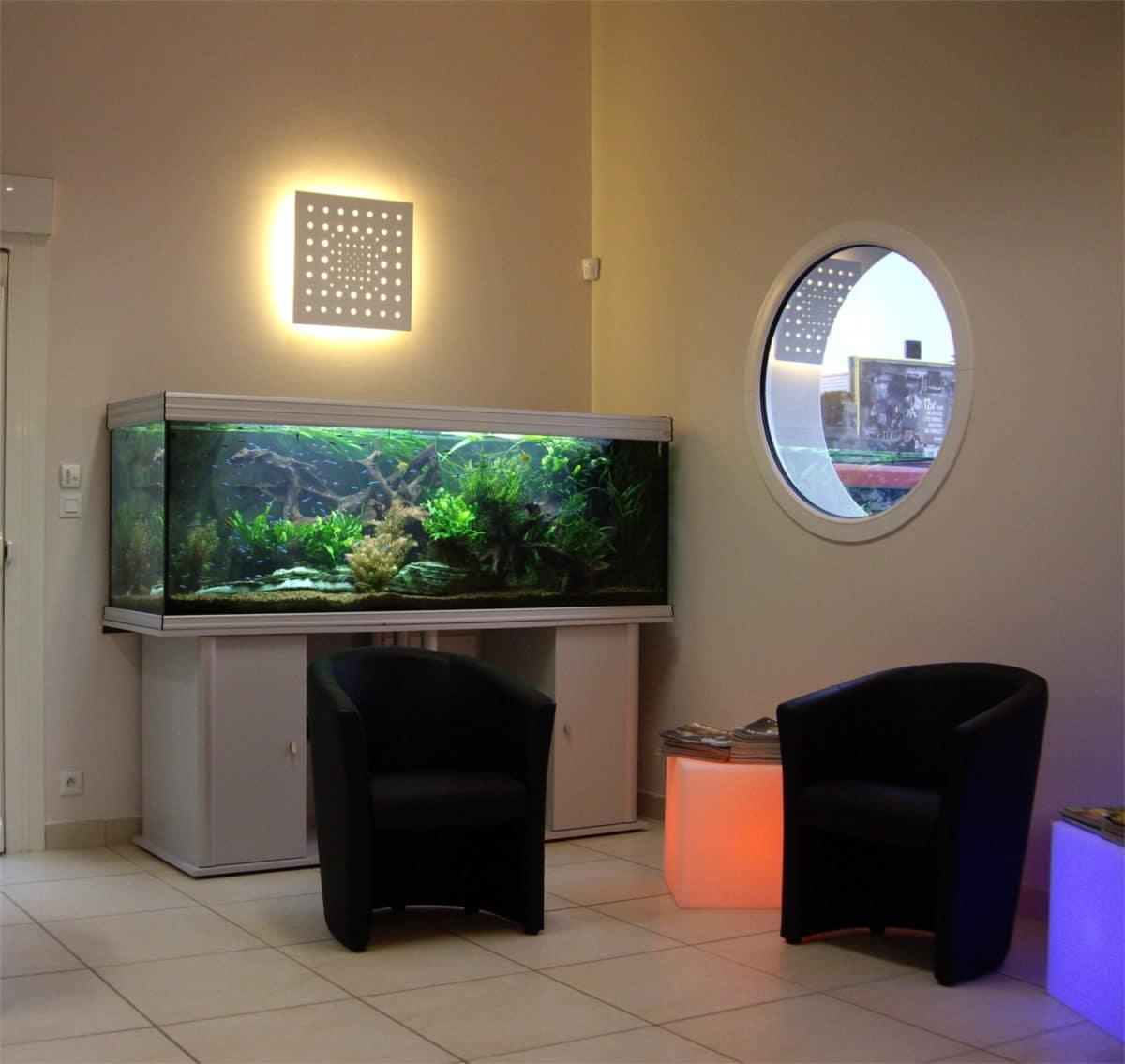 Aquarium planté aquascaping 1000L dans une clinique vétérinaire à St Herblain (44)