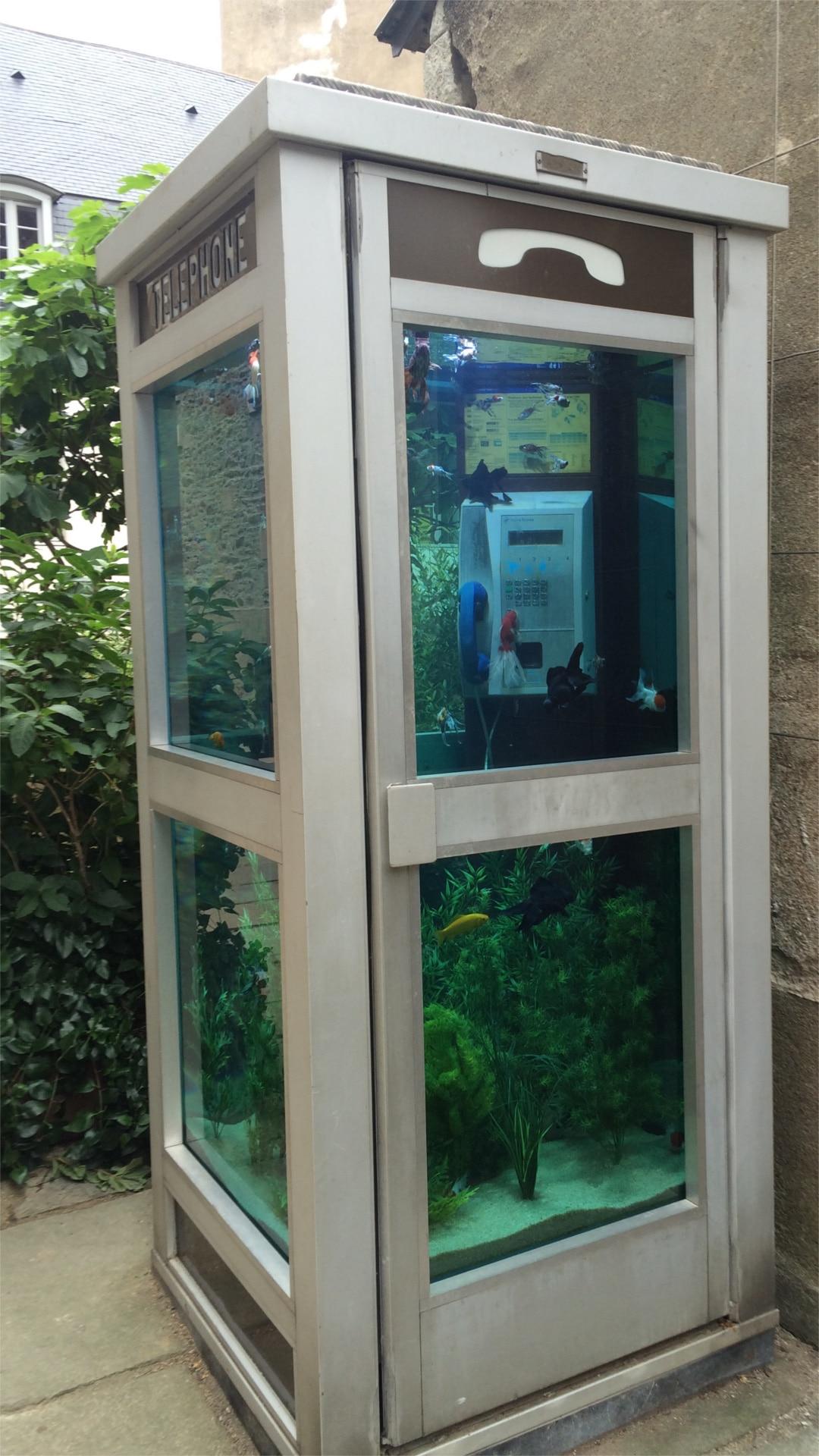 La fameuse Cabine Téléphonique-Aquarium,Œuvre de Benedetto Buffalino exposée pour le Voyage à Nantes 2016, Aménagée, installée et gérée par Biome Création!