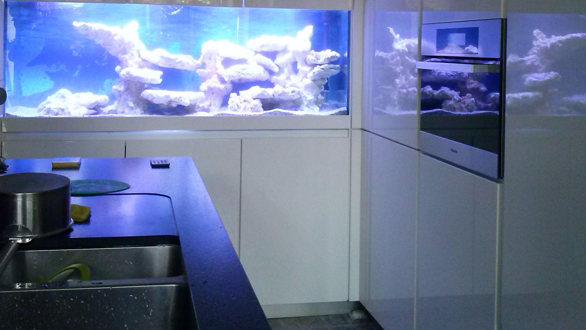 Aquarium lac africain incorporé dans une cuisine