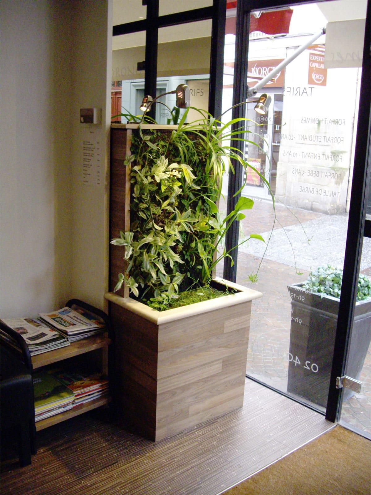 Petit jardin vertical en location chez un capilliculteur à Nantes