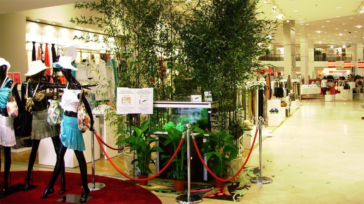 Événementiel de présentation d'écosystèmes pour les Galeries Lafayette de Nantes