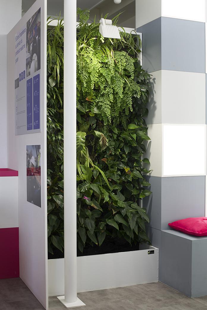 Mur végétal sur mesure, show-room GRDF à St Etienne de Montluc