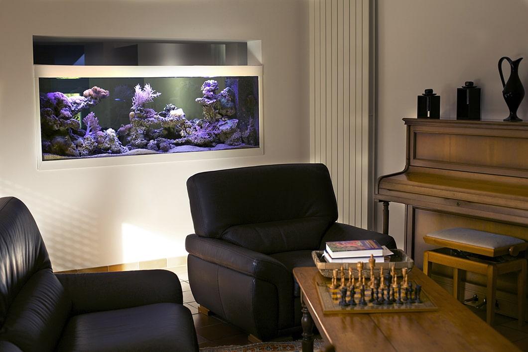 Aquarium récifal sur-mesure, 800L chez un particulier à Sautron(Aquarium récifal sur-mesure, 800L chez un particulier à Sautron