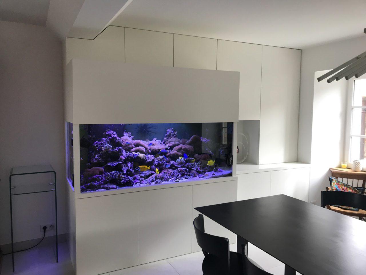 Aquarium récifal sur-mesure, 1200L chez un particulier au Pouliguen