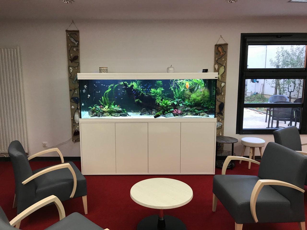 Aquarium Tropical, 1000L dans une résidence séniors à Rezé